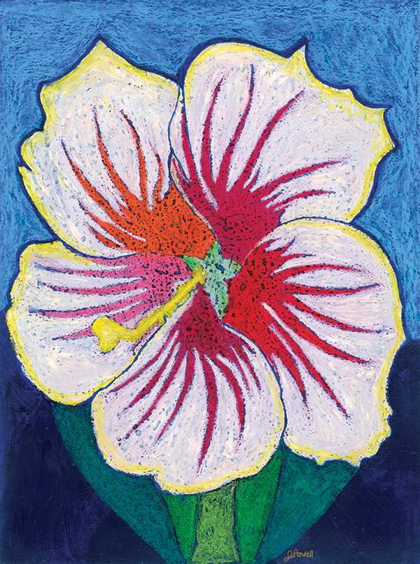 Artist rendering of a Cold Harbor Hibiscus.