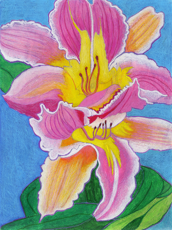 Rendering of a pink Easter Lily flower.